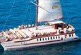 SuperCat Catamaran Dauphins Baleines Observation